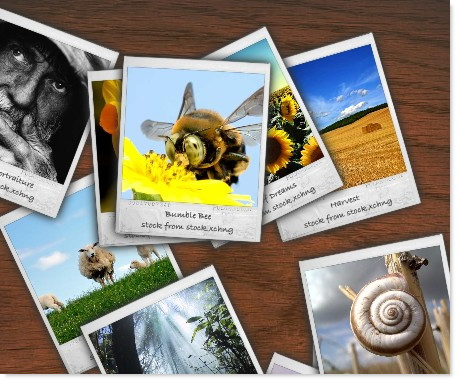 Polaroid flash based gallery