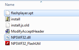 flashplayer folder