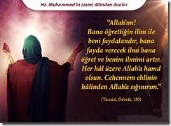 peygamber-efendimizin-dilinden-dualar25