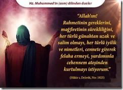 peygamber-efendimizin-dilinden-dualar26
